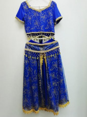 Blue and Gold Bollywood Outfit