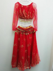 Red & Gold Bollywood Outfit