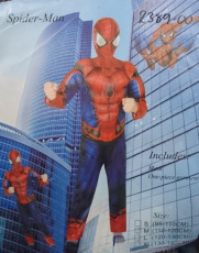 Spider-Man Boys costume